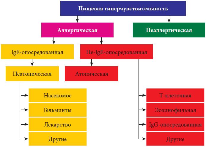 Прокторафия