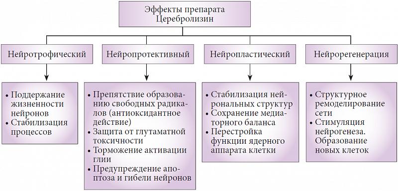 Нейротрофический
